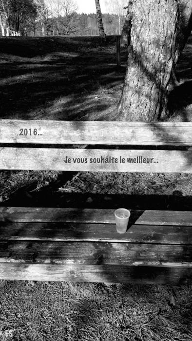 """2016... -3-"" ©E.5131"