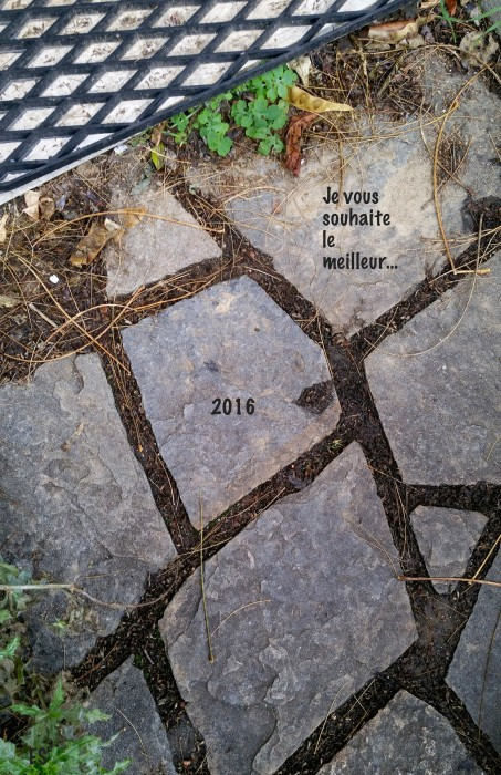 """2016..."" ©E.5131"